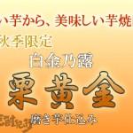 鹿児島県 白金酒造(株)より 本格焼酎「白金乃露 栗黄金」が秋季数量限定で発売(9月13日発売 )