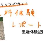 原料体験レポート 黒糖焼酎編