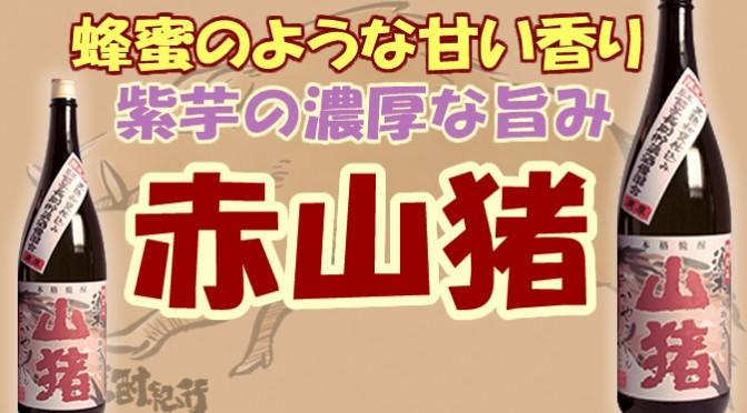 宮崎県 すき酒造(株)より本格芋焼酎 「限定 須木 赤山猪」が発売(6月10日蔵元出荷)