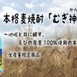 宮崎県 明石酒造(株)より 本格麦焼酎「むぎ神さあ」が発売(7月7日メーカー出荷 )
