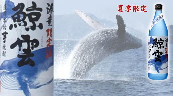鹿児島県 濵田酒造より、本格芋焼酎「海童 鯨雲」発売