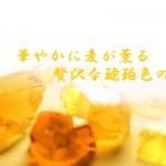 宮崎県 神楽酒造より、本格麦焼酎「くろうま薫滴(くんてき)」発売
